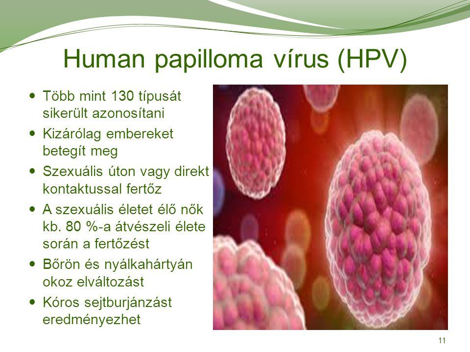 Human papilloma vírus (HPV) 11 Több mint 130 típusát sikerült azonosítani Kizárólag embereket betegít meg Szexuális úton vagy direkt kontaktussal fert