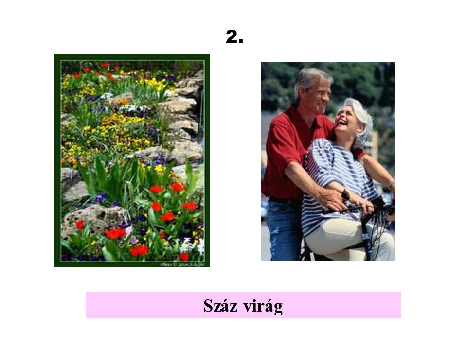 2. Száz virág