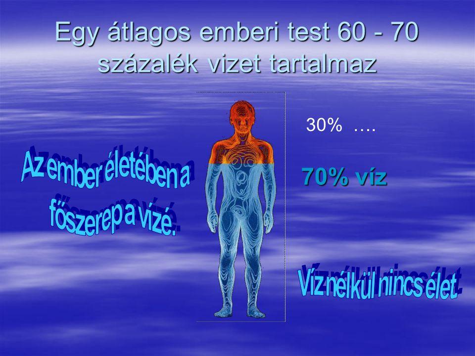 Egy átlagos emberi test 60 - 70 százalék vizet tartalmaz 30% …. 70% víz