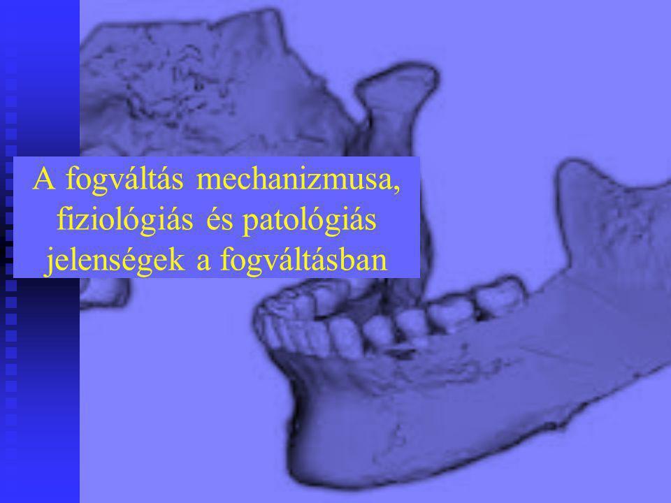 A fogváltás mechanizmusa, fiziológiás és patológiás jelenségek a fogváltásban