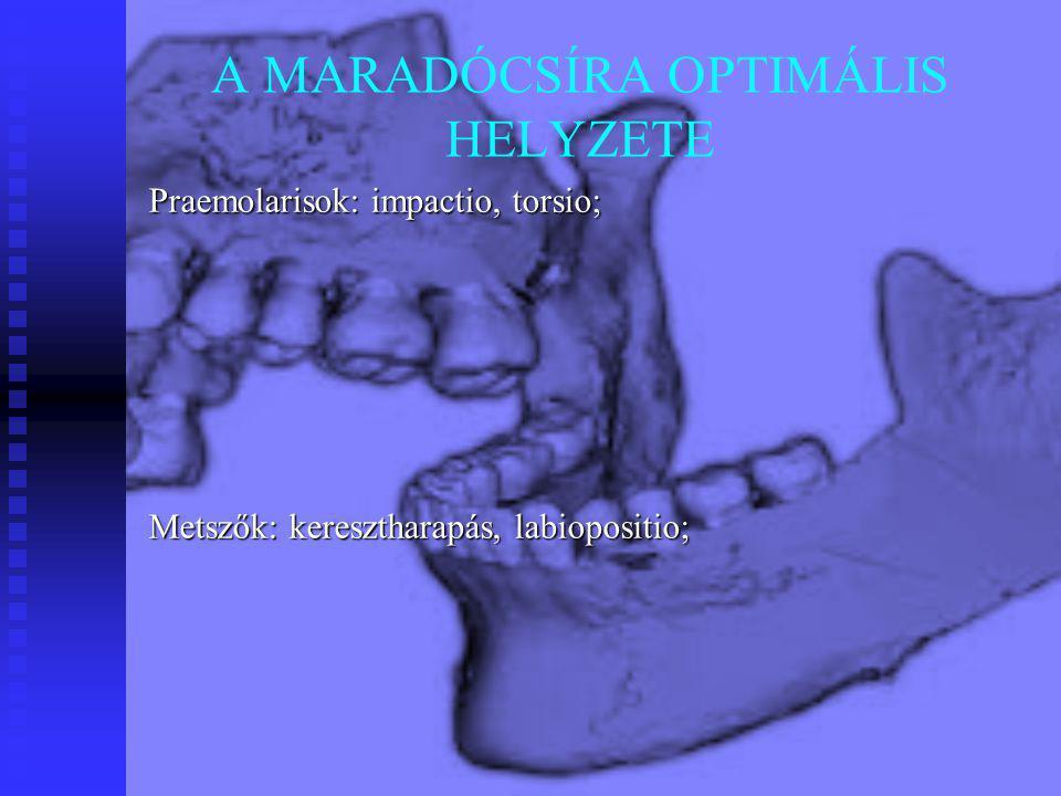 A MARADÓCSÍRA OPTIMÁLIS HELYZETE Praemolarisok: impactio, torsio; Metszők: keresztharapás, labiopositio;