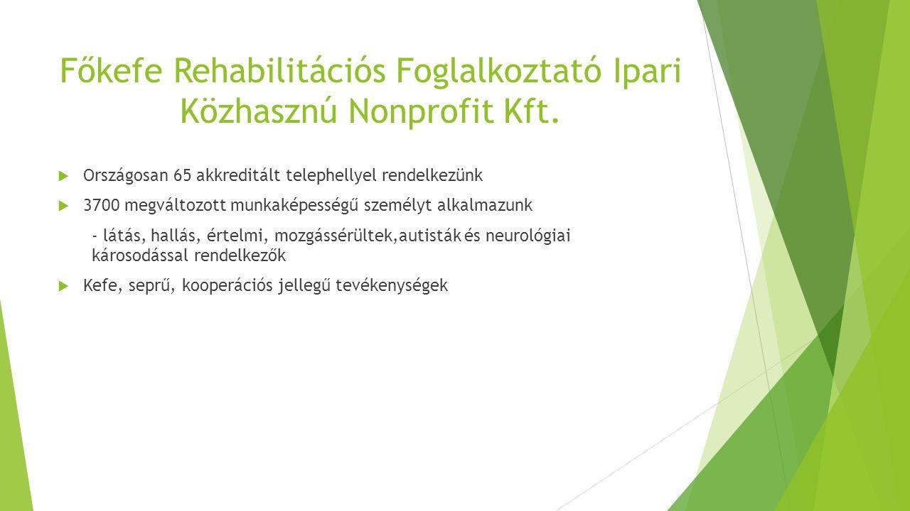 Főkefe Rehabilitációs Foglalkoztató Ipari Közhasznú Nonprofit Kft.  Országosan 65 akkreditált telephellyel rendelkezünk  3700 megváltozott munkaképe