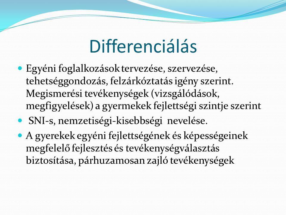 Differenciálás Egyéni foglalkozások tervezése, szervezése, tehetséggondozás, felzárkóztatás igény szerint.