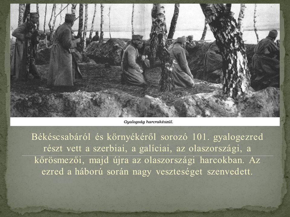 Békéscsabáról és környékéről sorozó 101. gyalogezred részt vett a szerbiai, a galíciai, az olaszországi, a kőrösmezői, majd újra az olaszországi harco