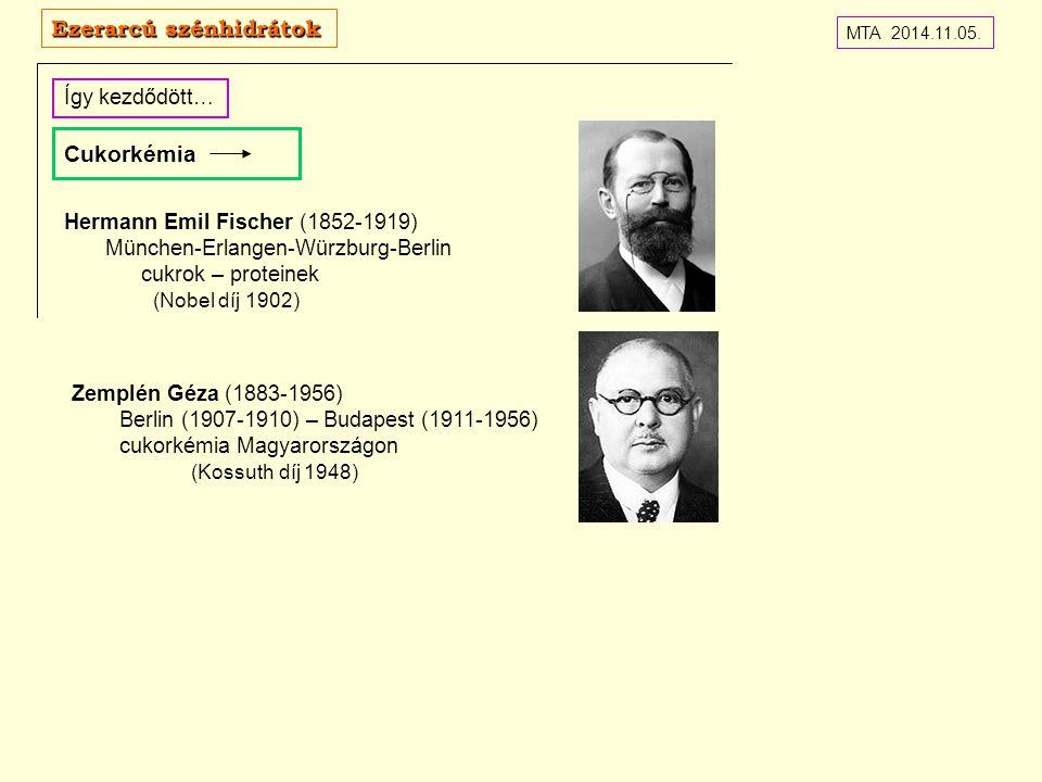 Cukorkémia Így kezdődött… MTA 2014.11.05. Ezerarcú szénhidrátok Hermann Emil Fischer (1852-1919) München-Erlangen-Würzburg-Berlin cukrok – proteinek (