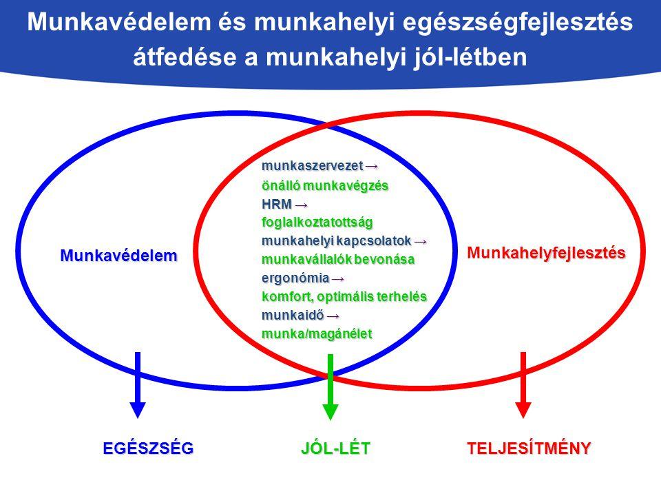 A munkahelyi szociális jól-lét összetevői Forrás: EU-OSHA, American Psychological Association, 2008 Egészség és biztonság A munka és a magánélet egyensúlya A munka- vállalók elismerése A foglalkoztatás növekedése Munkavállalói részvétel Kommunikáció TARTALMA A munkavállaló jó közérzete Szervezeti funkciók