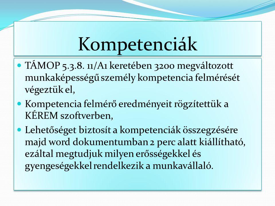 Kompetenciák TÁMOP 5.3.8. 11/A1 keretében 3200 megváltozott munkaképességű személy kompetencia felmérését végeztük el, Kompetencia felmérő eredményeit