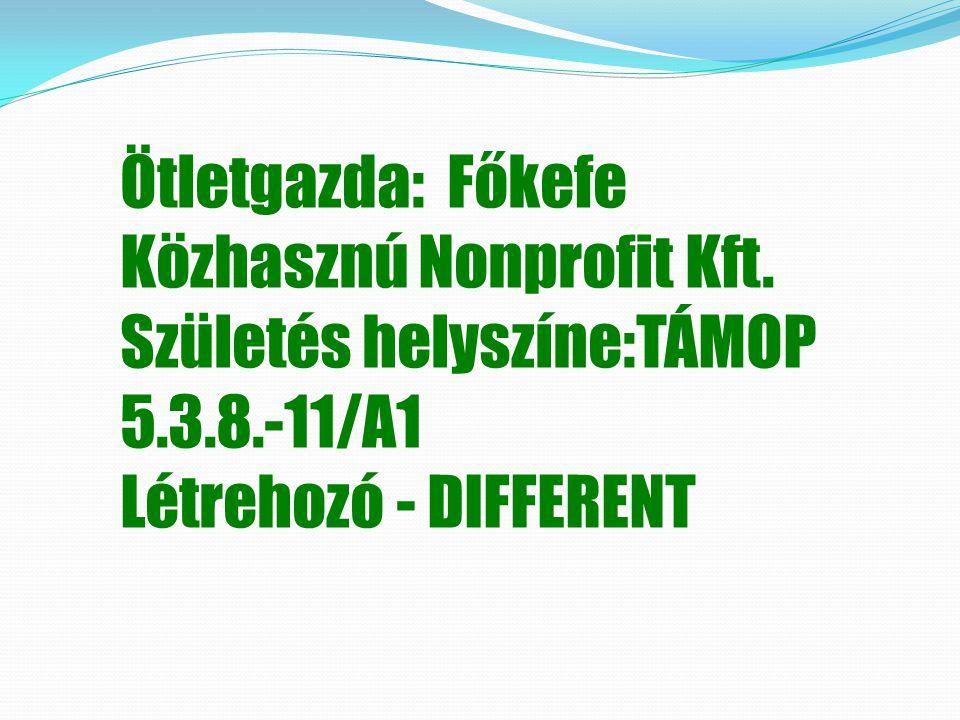 Ötletgazda: Főkefe Közhasznú Nonprofit Kft. Születés helyszíne:TÁMOP 5.3.8.-11/A1 Létrehozó - DIFFERENT