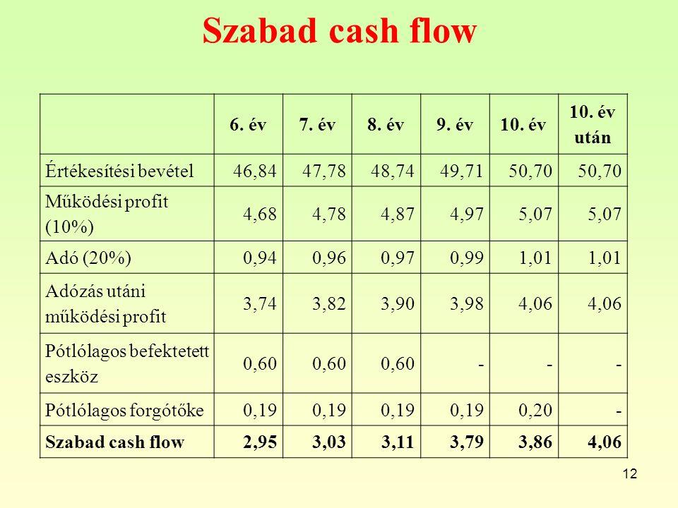 Szabad cash flow 12 6.év7. év8. év9. év10. év 10.