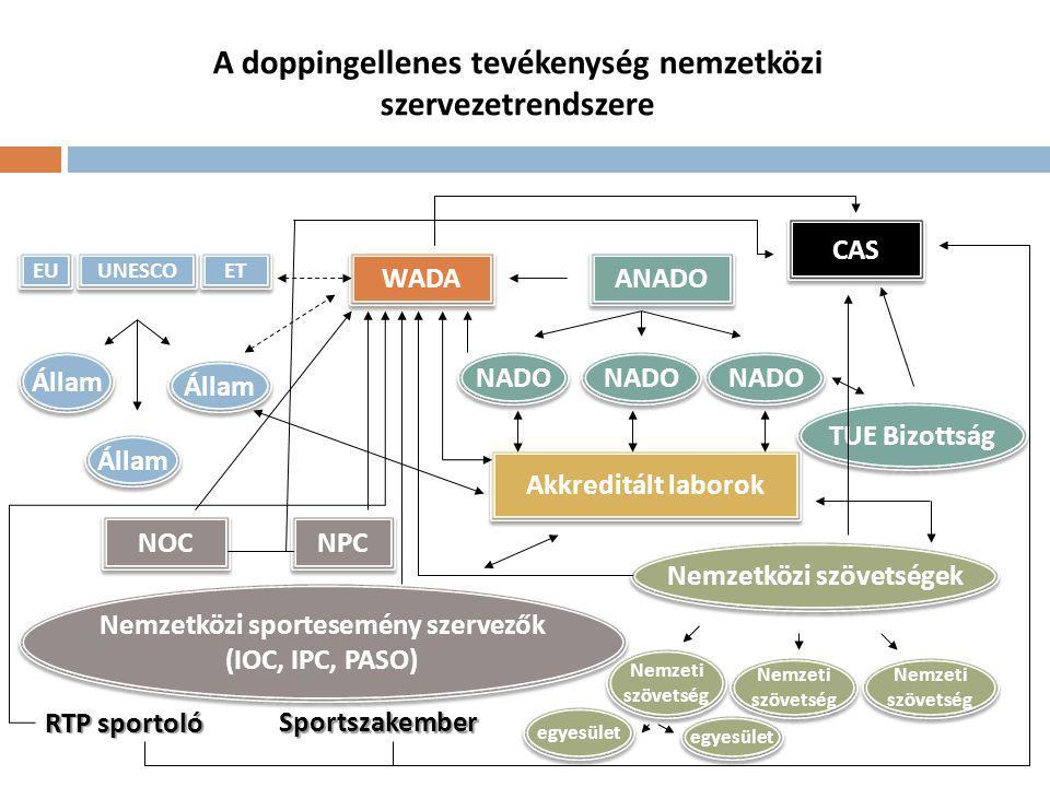 Jogszabályi háttér  Sportról szóló 2004.évi I.