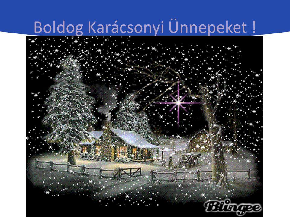 Boldog Karácsonyi Ünnepeket !