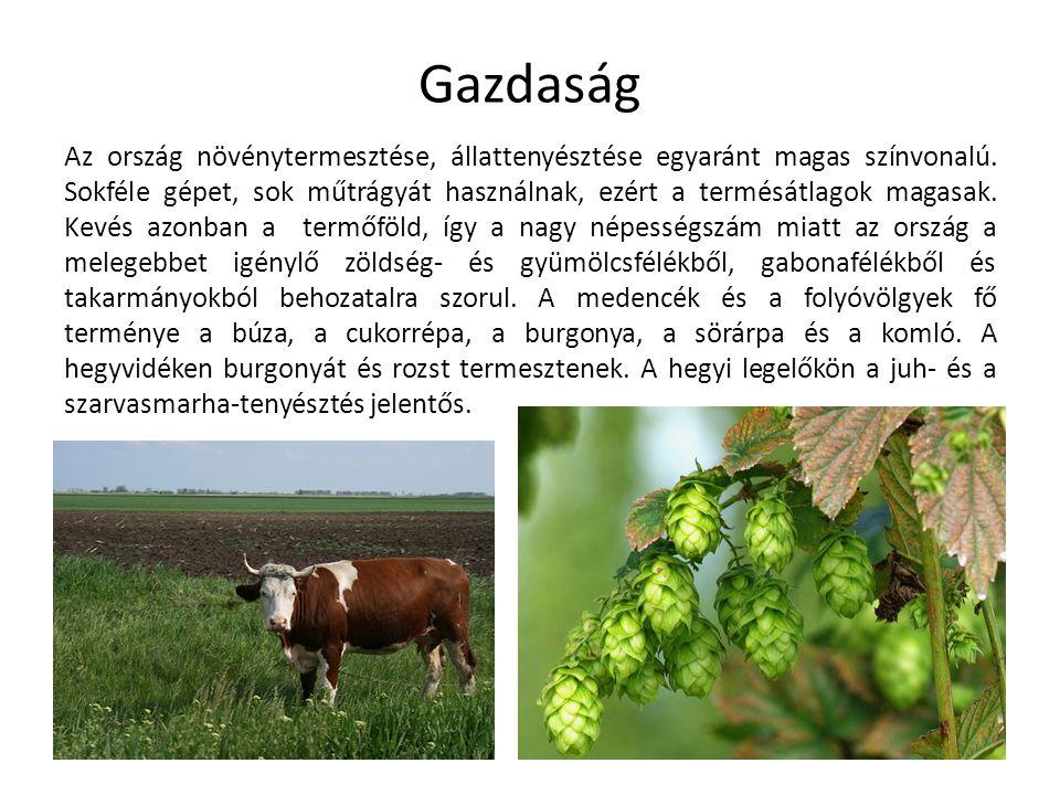 Az ország növénytermesztése, állattenyésztése egyaránt magas színvonalú. Sokféle gépet, sok műtrágyát használnak, ezért a termésátlagok magasak. Kevés