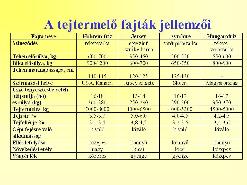 Hasznosítási lehetőségek: Üsző-előállítás (fajtatiszta állományban) Ún.