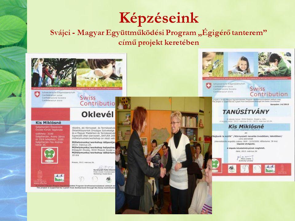 """Képzéseink Svájci - Magyar Együttműködési Program """"Égigérő tanterem című projekt keretében"""