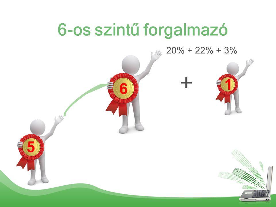 6-os szintű forgalmazó 6 5 1 20% + 22% + 3% +