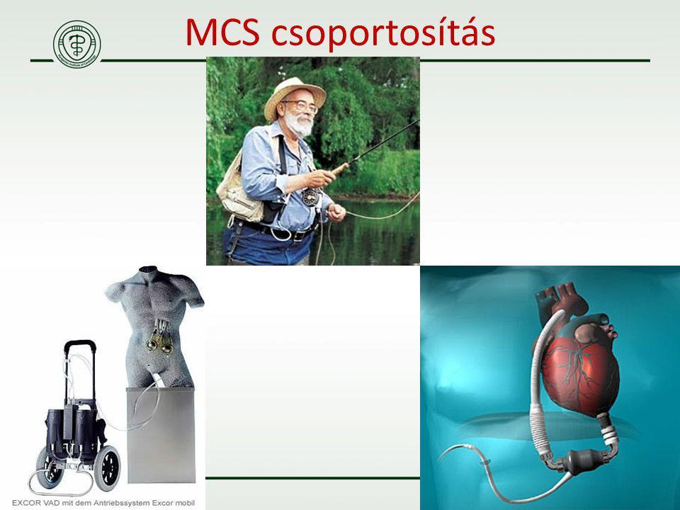 MCS csoportosítás