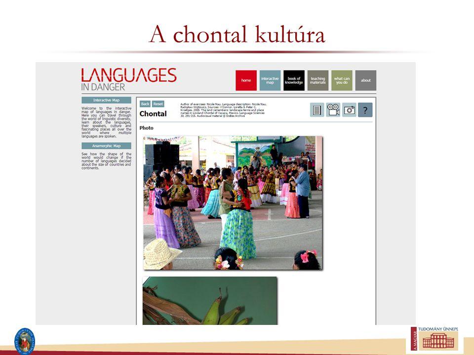 A chontal kultúra
