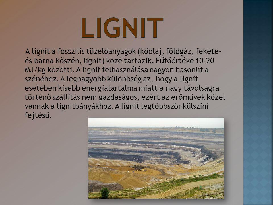 A lignit a fosszilis tüzelőanyagok (kőolaj, földgáz, fekete- és barna kőszén, lignit) közé tartozik. Fűtőértéke 10–20 MJ/kg közötti. A lignit felhaszn