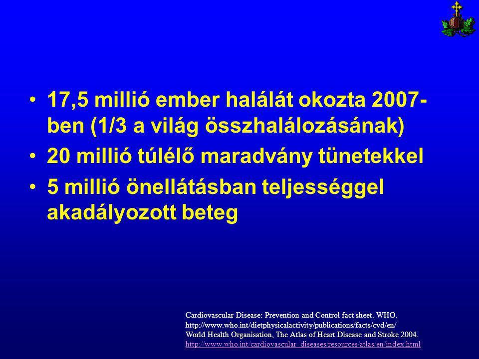 17,5 millió ember halálát okozta 2007- ben (1/3 a világ összhalálozásának) 20 millió túlélő maradvány tünetekkel 5 millió önellátásban teljességgel akadályozott beteg Cardiovascular Disease: Prevention and Control fact sheet.