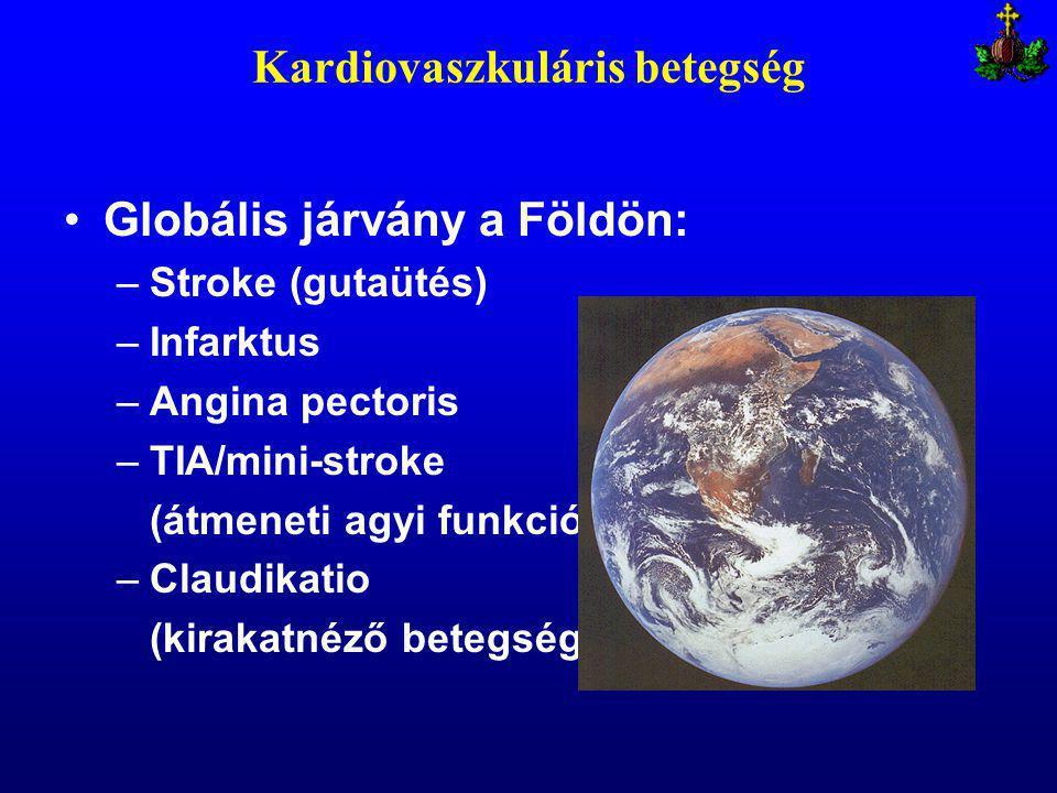Kardiovaszkuláris betegség Globális járvány a Földön: –Stroke (gutaütés) –Infarktus –Angina pectoris –TIA/mini-stroke (átmeneti agyi funkciózavar) –Claudikatio (kirakatnéző betegség)