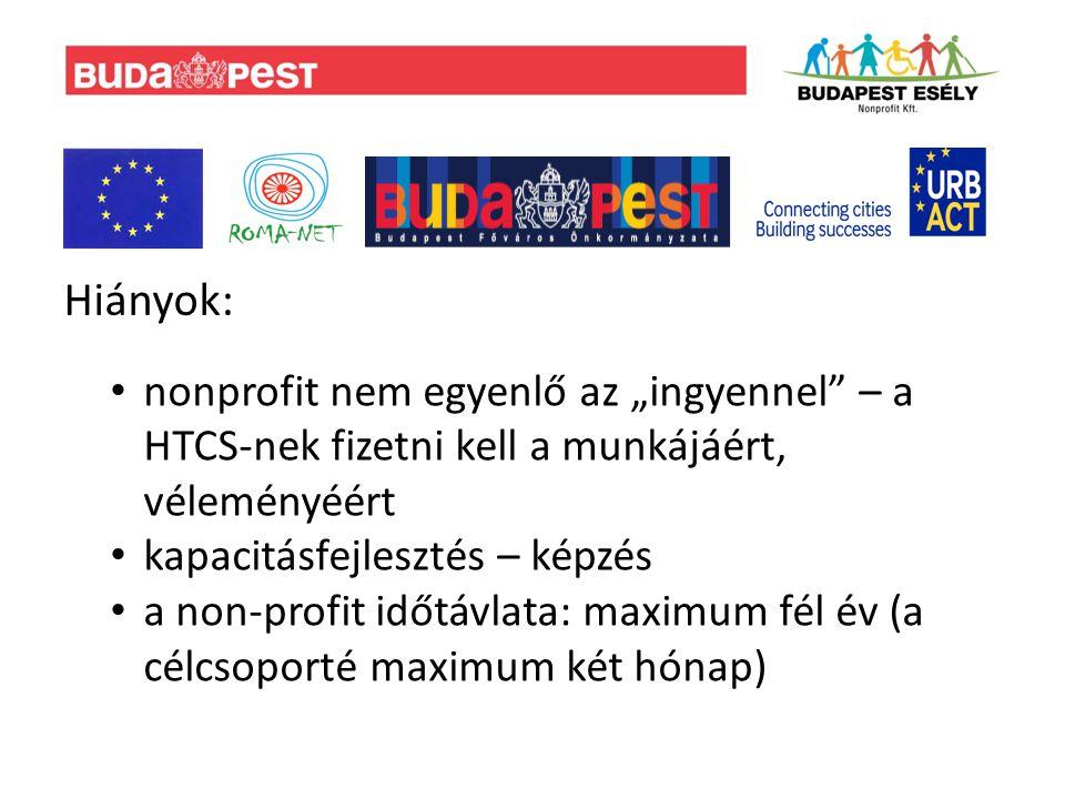 """Hiányok: nonprofit nem egyenlő az """"ingyennel – a HTCS-nek fizetni kell a munkájáért, véleményéért kapacitásfejlesztés – képzés a non-profit időtávlata: maximum fél év (a célcsoporté maximum két hónap)"""