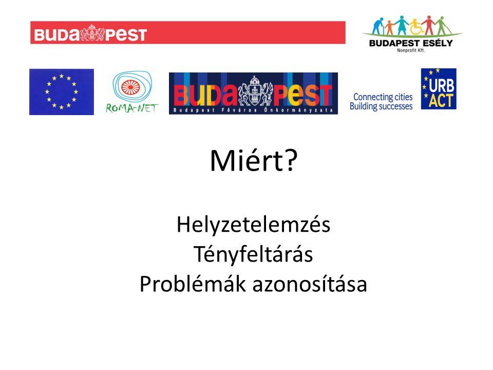 Szociális helyzet: A magyarországi cigányoknak 80 százaléka a legalsó jövedelmi harmadban található.