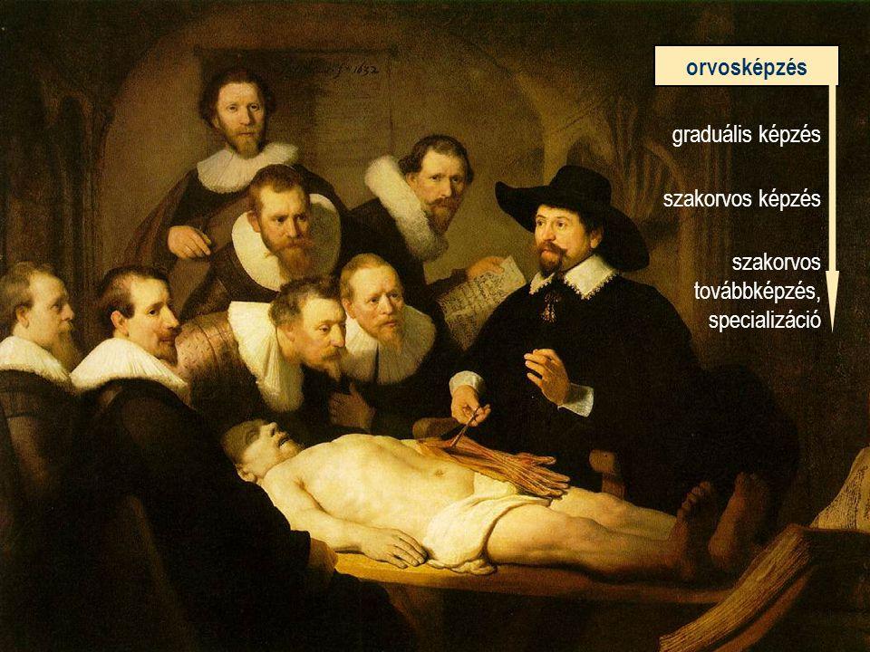 orvosképzés graduális képzés szakorvos képzés szakorvos továbbképzés, specializáció