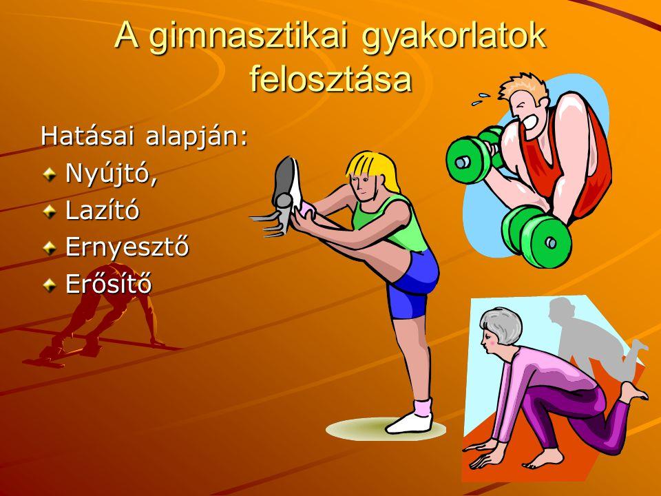 A gimnasztikai gyakorlatok felosztása Hatásai alapján: Nyújtó,LazítóErnyesztőErősítő