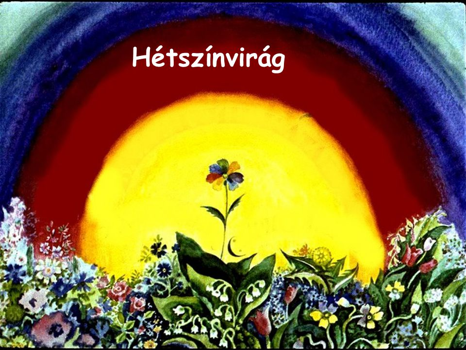 Szpahi Annuska szépen megköszönte az anyókának a virágot, s kiment a kapun.