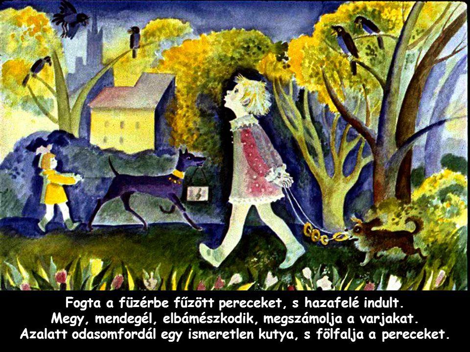 Szpahi - Jaj, te rossz kutya - kiabált Annuska, s a kutya után eredt.
