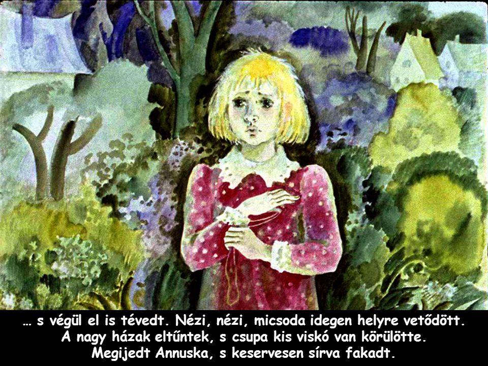 Szpahi Annuska ott találta magát az Északi-sarkon, ahol száz fok hideg van.