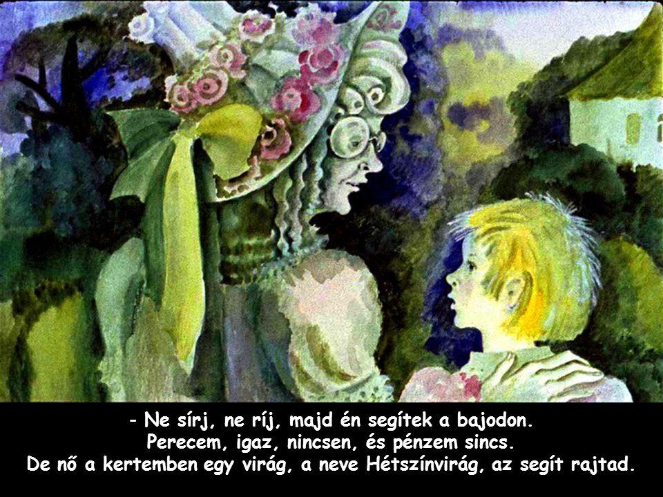 Szpahi - Ne sírj, ne ríj, majd én segítek a bajodon. Perecem, igaz, nincsen, és pénzem sincs. De nő a kertemben egy virág, a neve Hétszínvirág, az seg