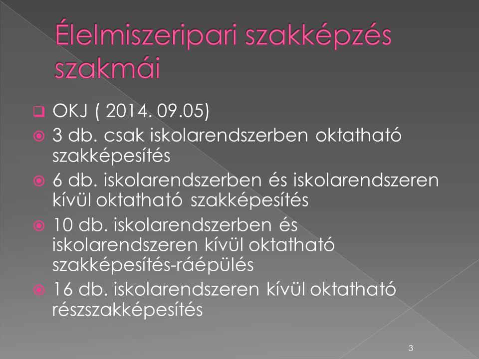  OKJ ( 2014. 09.05)  3 db. csak iskolarendszerben oktatható szakképesítés  6 db. iskolarendszerben és iskolarendszeren kívül oktatható szakképesíté