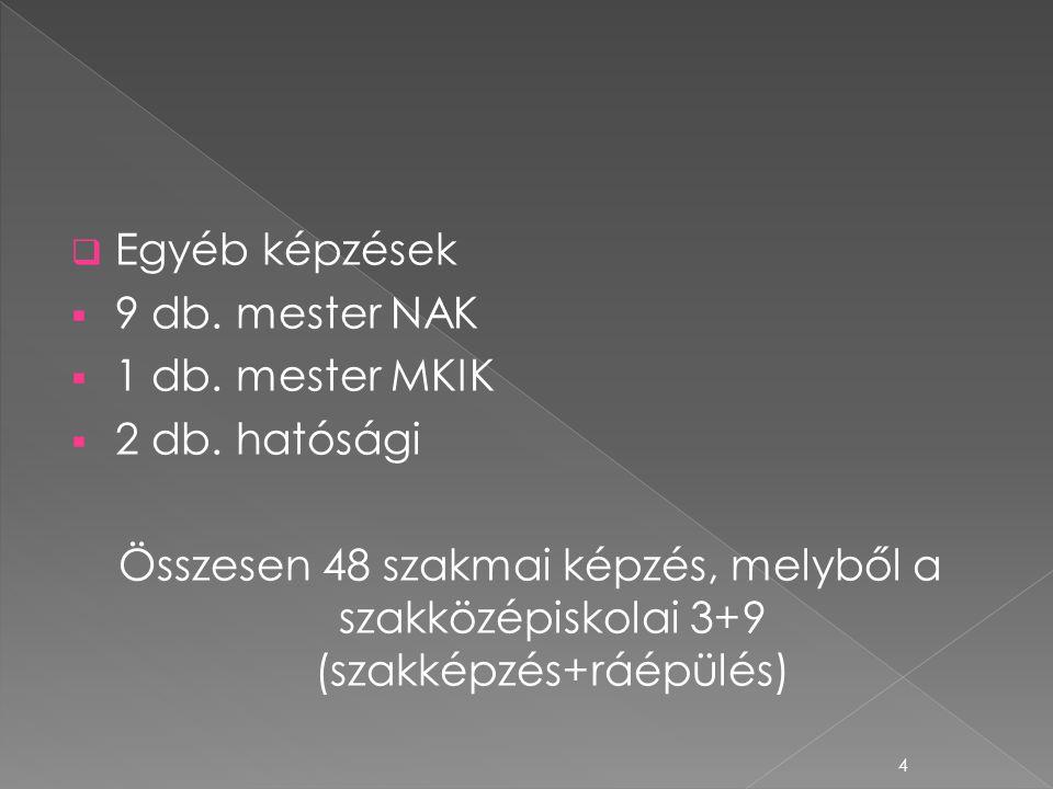  Egyéb képzések  9 db. mester NAK  1 db. mester MKIK  2 db. hatósági Összesen 48 szakmai képzés, melyből a szakközépiskolai 3+9 (szakképzés+ráépül
