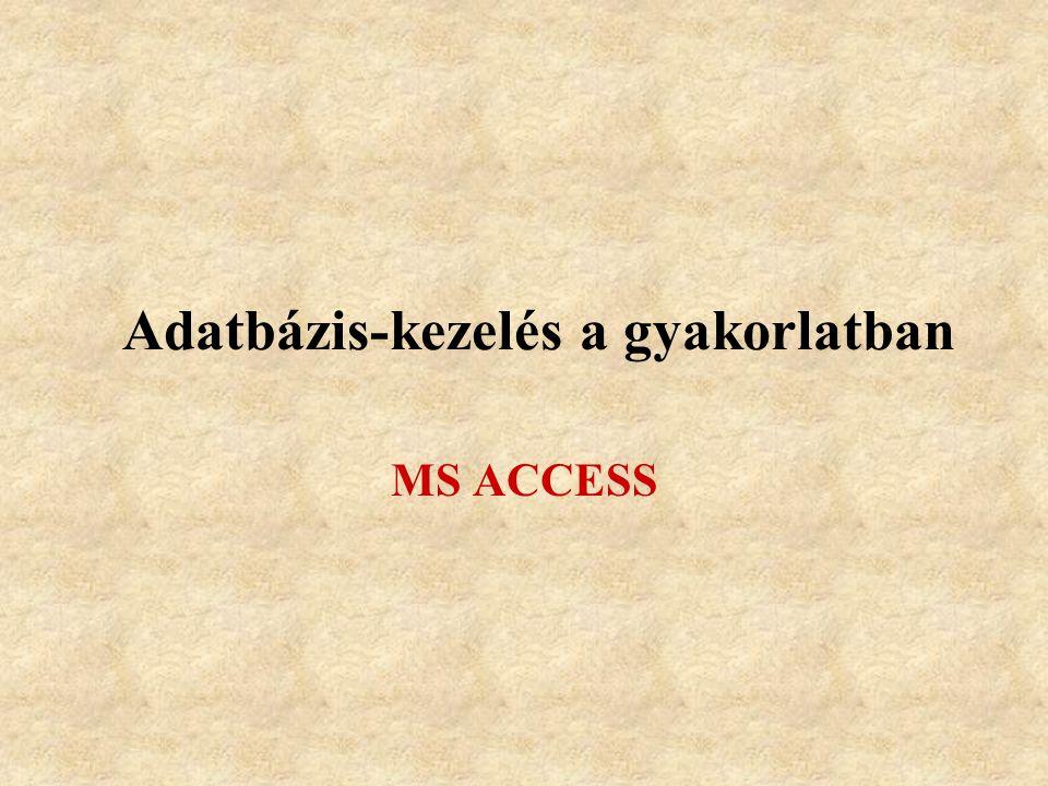 Adatbázis-kezelés a gyakorlatban MS ACCESS