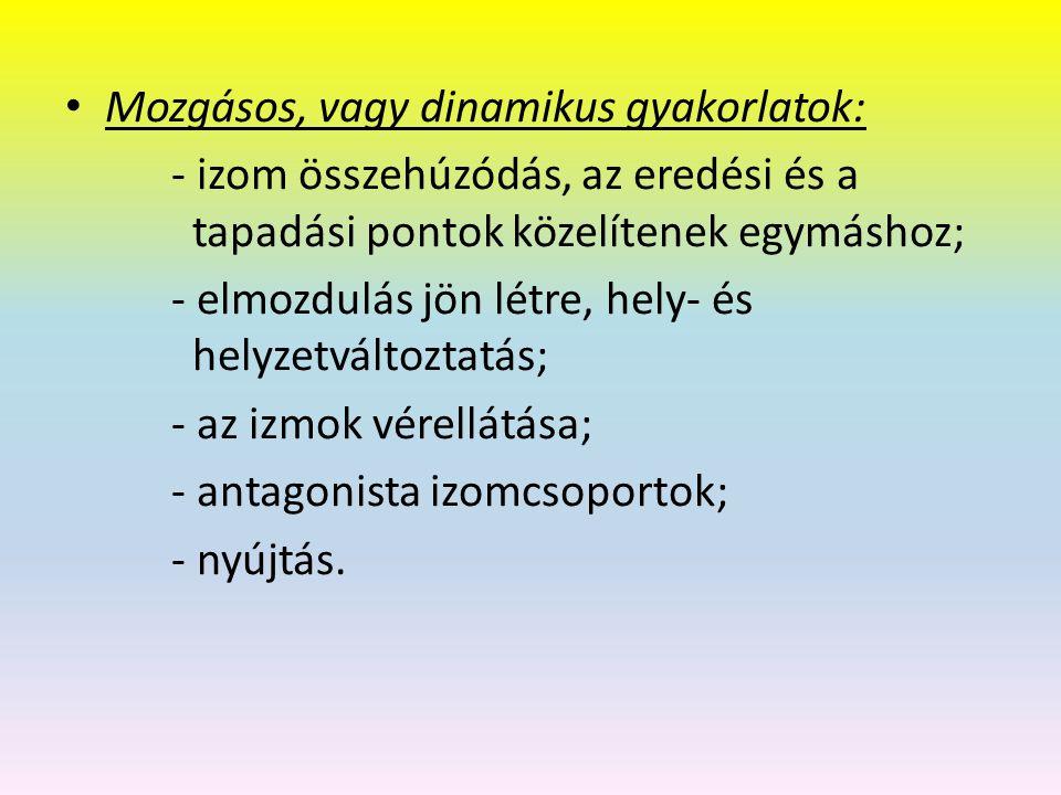Mozgásos, vagy dinamikus gyakorlatok: - izom összehúzódás, az eredési és a tapadási pontok közelítenek egymáshoz; - elmozdulás jön létre, hely- és helyzetváltoztatás; - az izmok vérellátása; - antagonista izomcsoportok; - nyújtás.