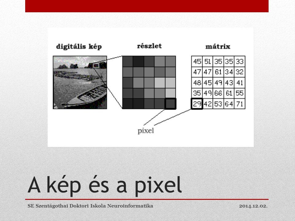 A kép és a pixel 2014.12.02.SE Szentágothai Doktori Iskola Neuroinformatika