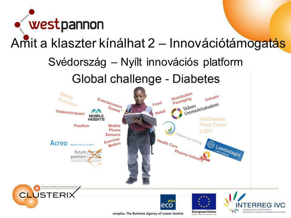 Svédország – Nyílt innovációs platform Amit a klaszter kínálhat 2 – Innovációtámogatás