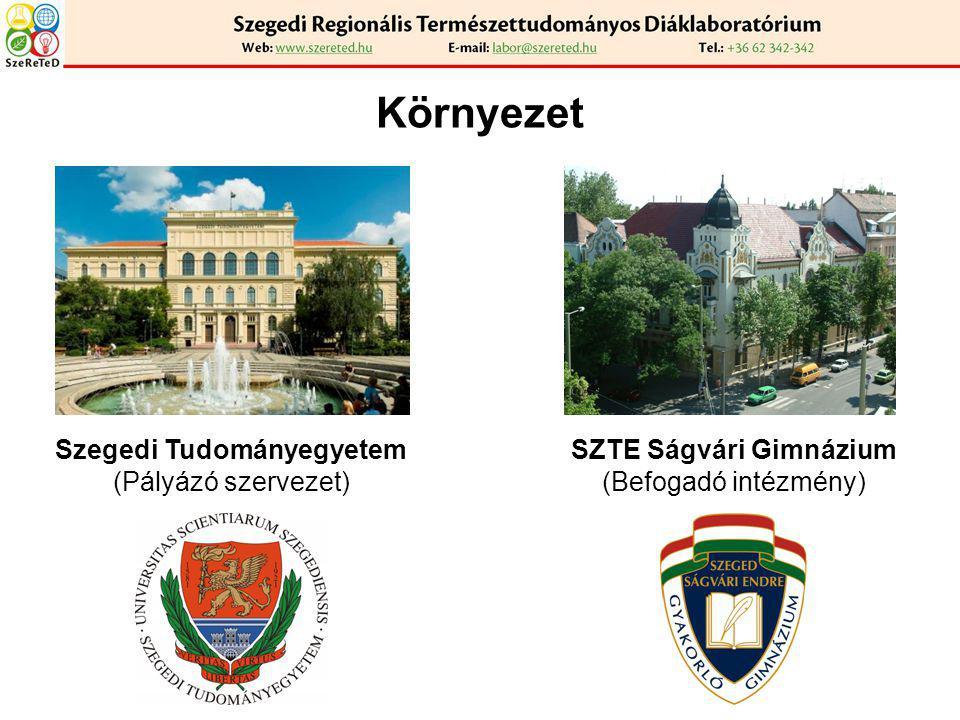 A projekt (TÁMOP-3.1.3-10/2-2010-0013) Felépítés: SZAKMAI VEZETŐ (Dr.