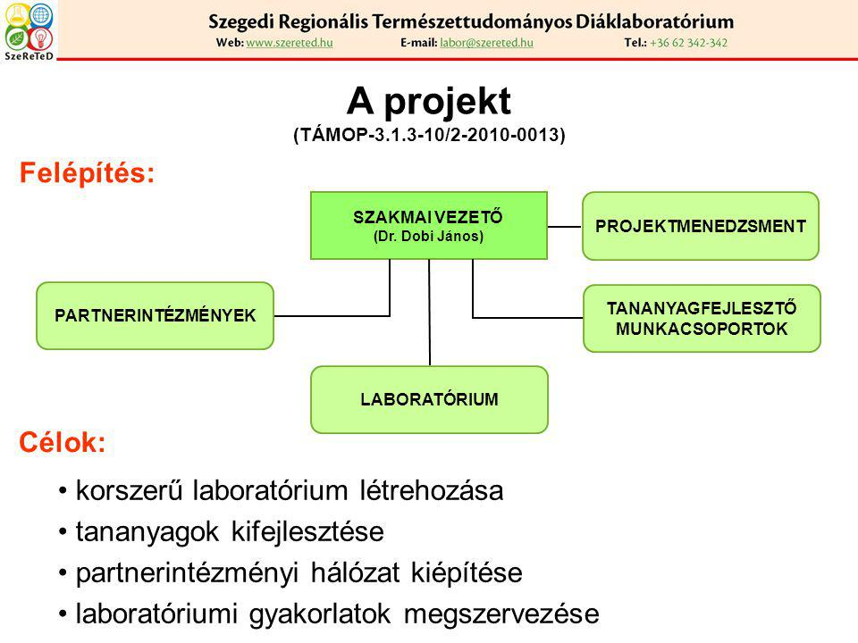 A projekt (TÁMOP-3.1.3-10/2-2010-0013) Felépítés: SZAKMAI VEZETŐ (Dr. Dobi János) Célok: korszerű laboratórium létrehozása tananyagok kifejlesztése pa