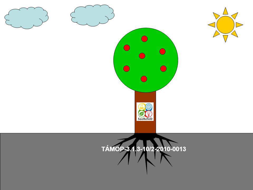 TÁMOP-3.1.3-10/2-2010-0013
