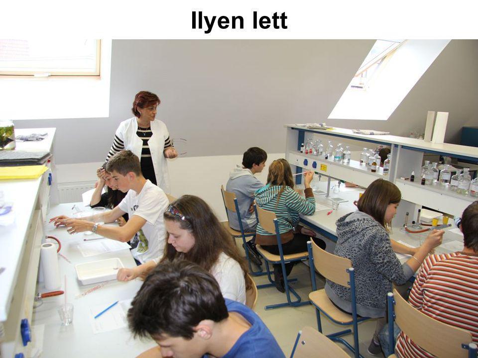 Tevékenységek Tudománynépszerűsítés Versenyek Tanároknak és tanárjelölteknek Laboratóriumi foglalkozások Érettségi előkésztítő Szakkörök Fizika 8.évf.