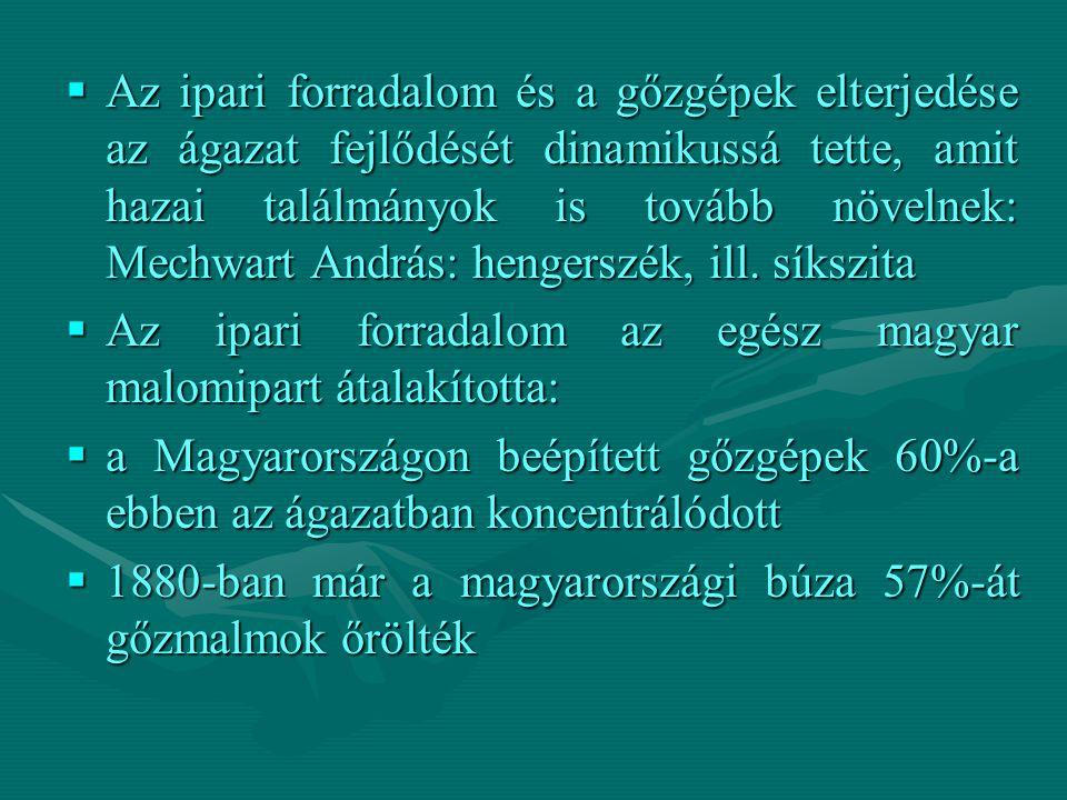  Az ipari forradalom és a gőzgépek elterjedése az ágazat fejlődését dinamikussá tette, amit hazai találmányok is tovább növelnek: Mechwart András: hengerszék, ill.