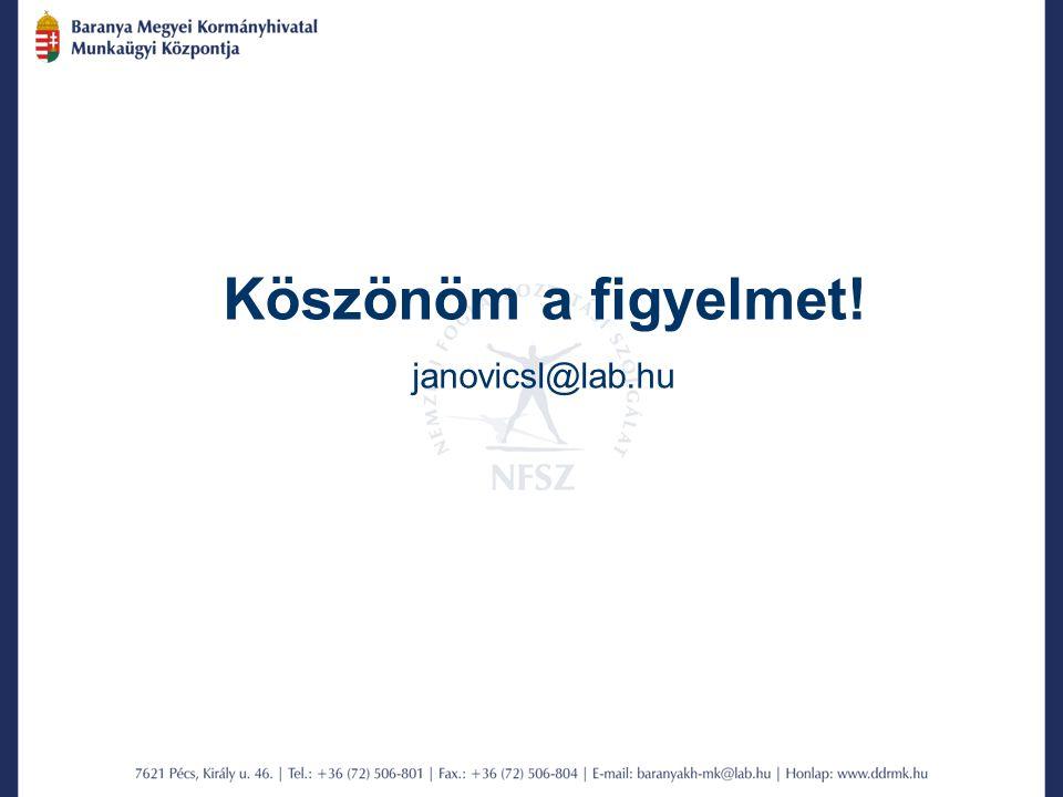 Köszönöm a figyelmet! janovicsl@lab.hu