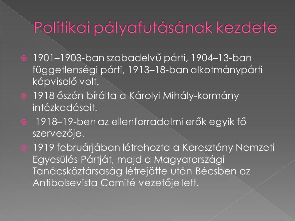  1901–1903-ban szabadelvű párti, 1904–13-ban függetlenségi párti, 1913–18-ban alkotmánypárti képviselő volt.  1918 őszén bírálta a Károlyi Mihály-ko