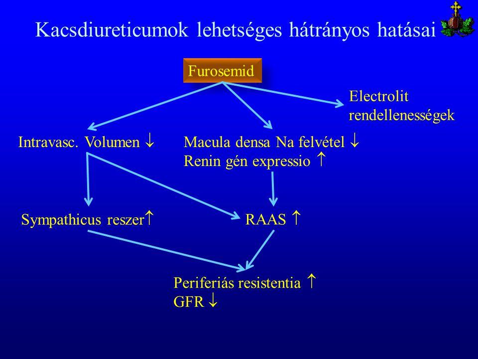 Kacsdiureticumok lehetséges hátrányos hatásai Intravasc. Volumen  Furosemid Macula densa Na felvétel  Renin gén expressio  RAAS  Sympathicus resze