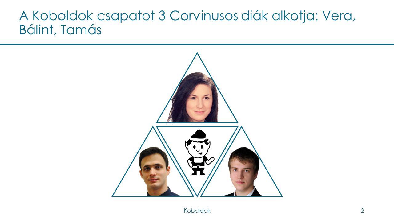 A Koboldok csapatot 3 Corvinusos diák alkotja: Vera, Bálint, Tamás Koboldok2