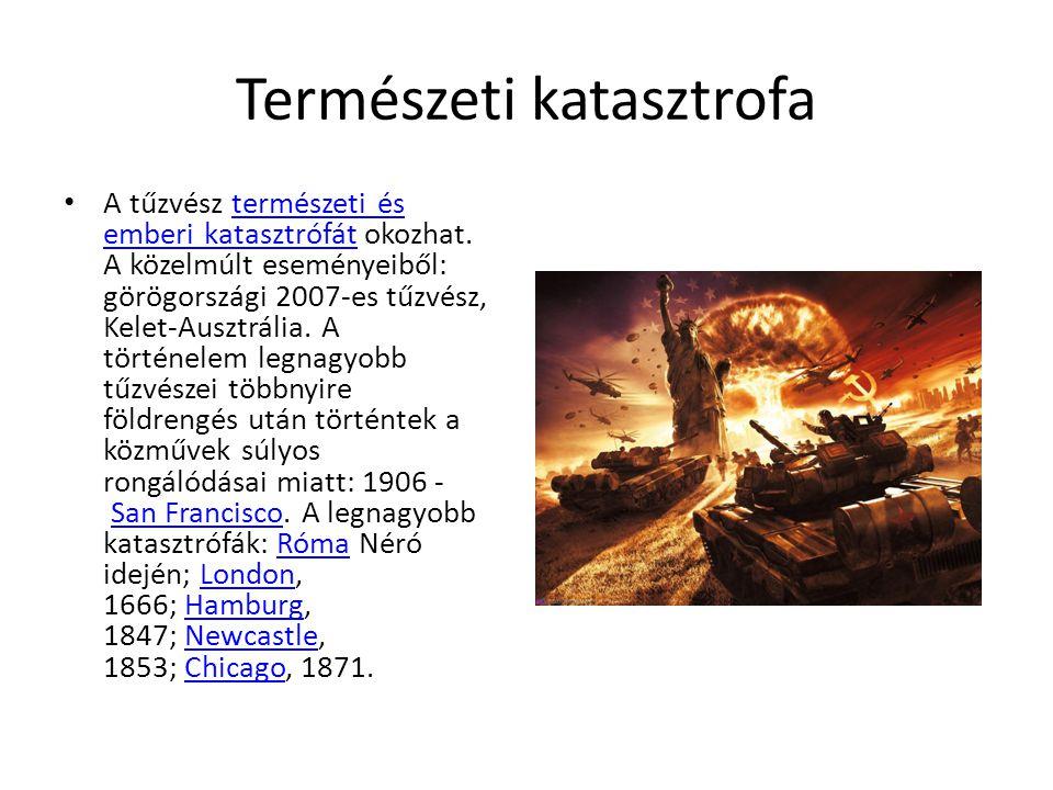Természeti katasztrofa A tűzvész természeti és emberi katasztrófát okozhat.