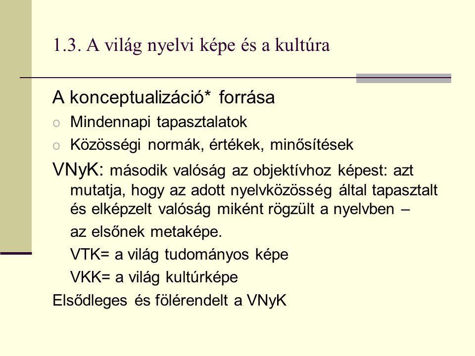 1.3. A világ nyelvi képe és a kultúra A konceptualizáció* forrása o Mindennapi tapasztalatok o Közösségi normák, értékek, minősítések VNyK: második va