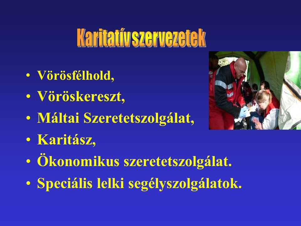 Vörösfélhold, Vöröskereszt, Máltai Szeretetszolgálat, Karitász, Ökonomikus szeretetszolgálat. Speciális lelki segélyszolgálatok.